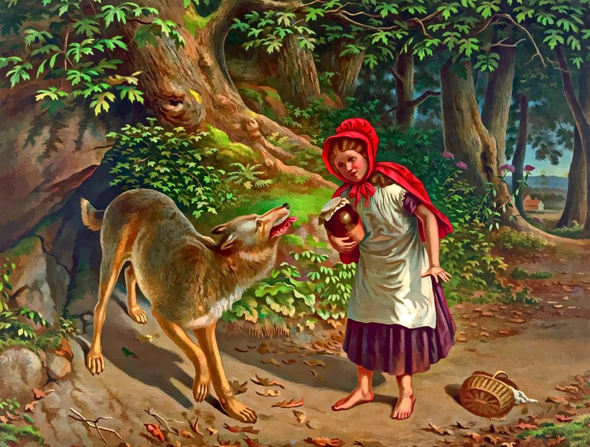 Czerwiono Kapucka i wilk ze Sosnowca